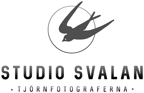 Studio Svalan